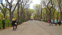 NY_NYC_CentralPark_byEduardKrakhmalnikov_2012_002