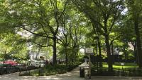 NY_NYC_WashingtonSquareVillage_CharlesABirnbaum_2018_04.jpg