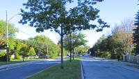 ON_Toronto_DonMillsNeighbourhood_26_NathanJenkins_2014.jpg
