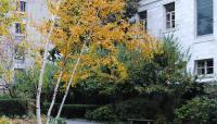 Prouty-Garden1_KatieCharbonneau_2011.jpg