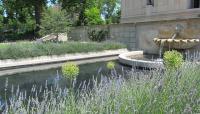 RodinMusuem-CB-2012-4.jpg