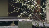 ShofusoJapaneseGarden4-PA-FriendsOfTheJapaneseHouseAndGarden-2013.jpg