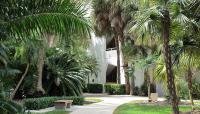 University-of-Miami8_RoccoCeo2014.jpg