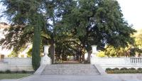 University-of-Texas-Austin2_WilliamNiendorff2014.jpg