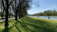 Washington_DC_LincolnMemorial_byCharlesABirnbaum_11042020_034_sig.jpg