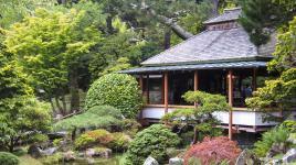 GoldenGateParkJapaneseTeaGarden.jpg
