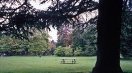 Volunteer Park_03