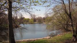 Jackson Park_04