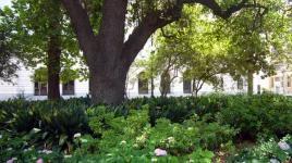 Lafayette Square-LA_02