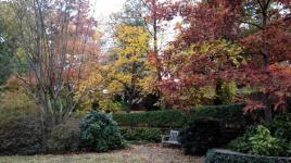 University of Georgia Founders Memorial Garden_04