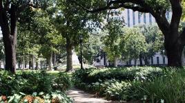 Lafayette Square-LA_04