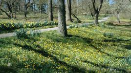 Bartram's Garden_01