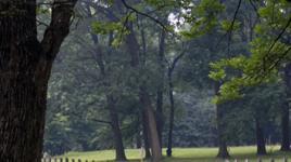 Awbury Arboretum_04