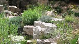 Alpine Rock Garden, Denver Botanic Gardens.JPG
