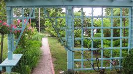 Anne-Spencer-Garden-4-Brian-Katen-2015.jpg