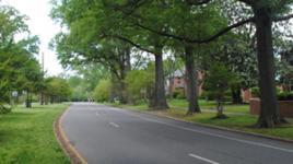 BrooklandParkway-sig.jpg