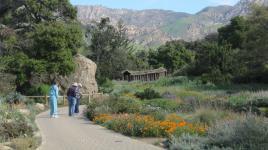CA_SantaBarbara_BotanicGarden_signature_01_CharlesBirnbaum_2010.jpg