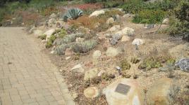 CA_SantaBarbara_BotanicGarden_signature_05_CharlesBirnbaum_2011.jpg