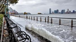 CourageousByDesign-www.carbonbrief.orgflooding-battery-park-ny_Sig.jpg