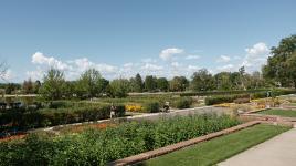DenverWashington-Park-5--Brian-Thomson2015.jpg