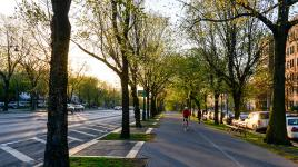 EasternParkway_signature_CourtesyNYCParksRec.jpg