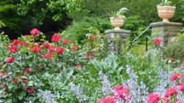 GardeningwithHistory-sig.jpg
