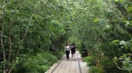 Highline-June-2013-sig.jpg
