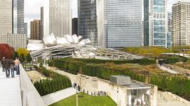 IL_Chicago_MillenniumPark_23_NancySlade_2009_Signature.jpg
