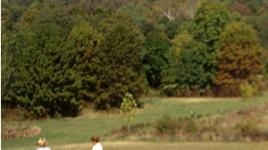 Louisville Park sig.jpg