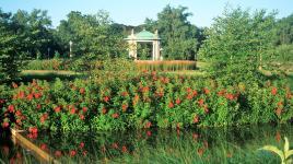 MO_StLouis_Forest Park-RiverDesPeres_courtesyOvS_2003_002_Sig.jpg