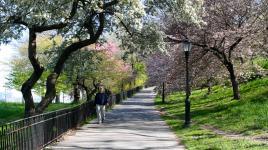 NYC_RiversidePark_signature_LeslieSherr_2012_01.jpg