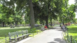 NY_NYC_HerbertVonKingPark_04_MarieWarsh_2011_Signature.jpg