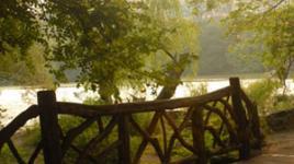 Nature-CultureUpdate3-sig.jpg