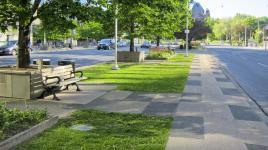 ON_Toronto_UniversityAve_signature_CharlesBirnbaum_2013_02.jpg