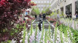 RockefellerCenterPlaza_feature_CharlesBirnbaum_2012.jpg
