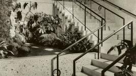 Shellhorn_Ruth_Bullock's_Wilshire_1950s.jpg