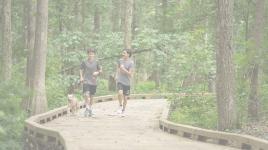 Trail2-sig-halftone.jpg