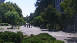 UC Berkeley - sig.jpg