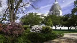 USCapitolGrounds_feature_BarrettDoherty_2015.jpg