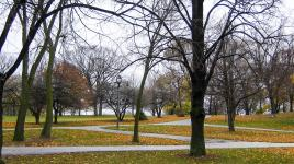 WashingtonPark_feature_CharlesBirnbaum_2005.jpg