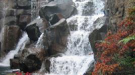 WaterfallGarden_seattle_thumb.jpg