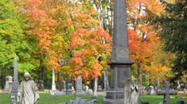 Woodlawn-Cemetery_Elmira_Sig.jpg