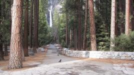 YosemiteFalls_signature_DonFox_2010_02.jpg