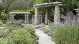 Zellerbach Garden of Perennials, San Francisco Botanical Gardens.jpg