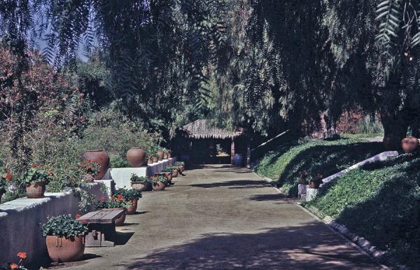 Rancho Los Alamitos_03