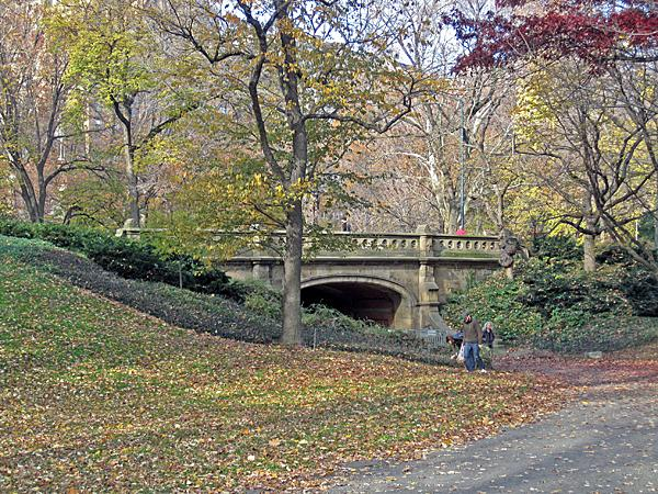 Central Park NYC_05