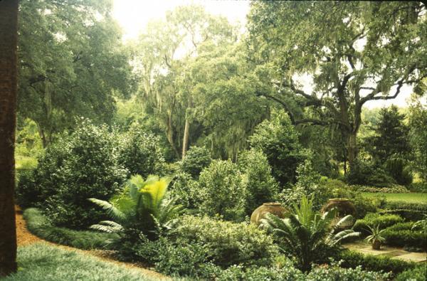 Pinewood Estate_06