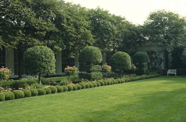 White House Rose Garden_01