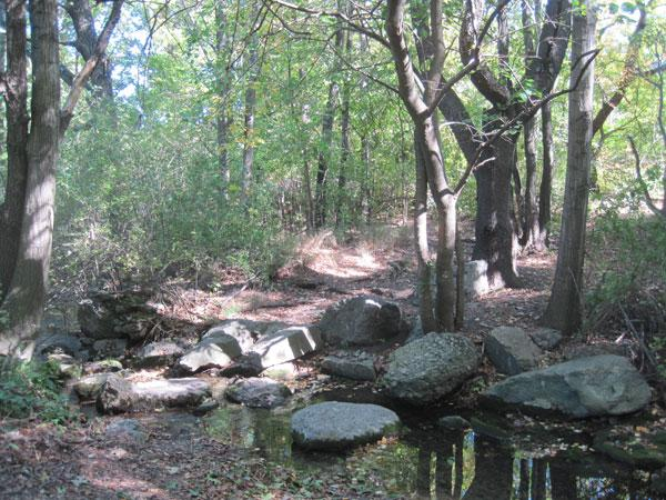 Olmsted Park_01