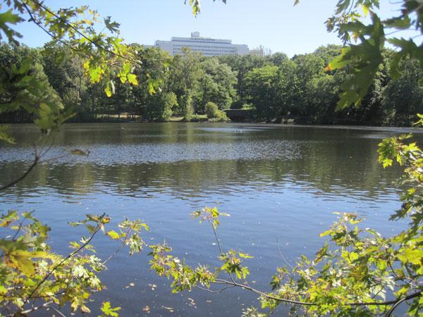 Olmsted Park_06